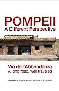 Pompeii: A Different Perspective