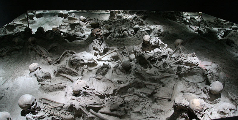The skeletons from the boat sheds at Herculaneum